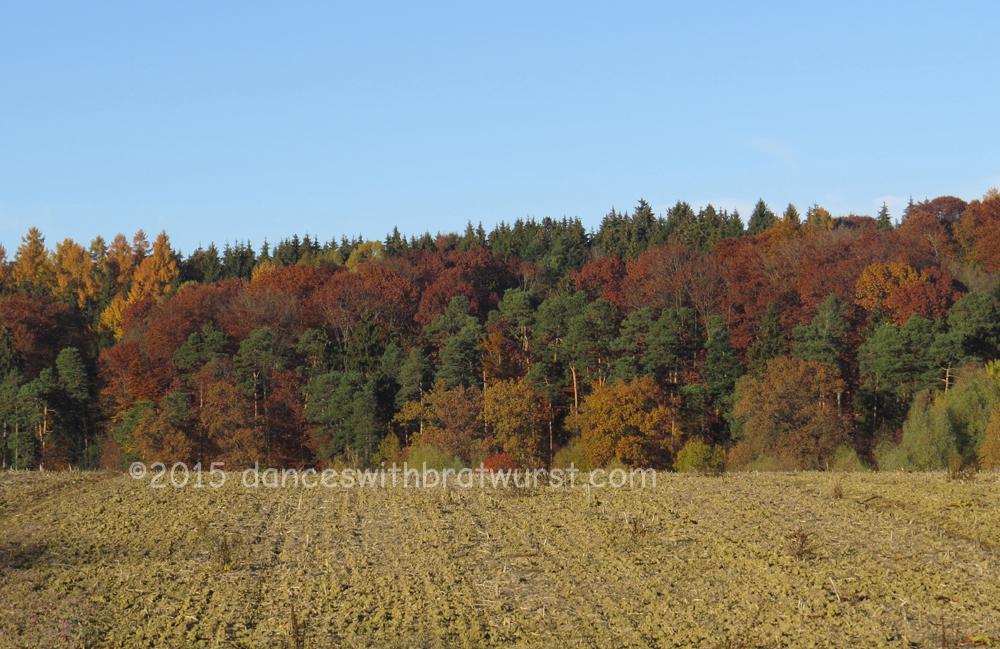 Herbst bei Freising